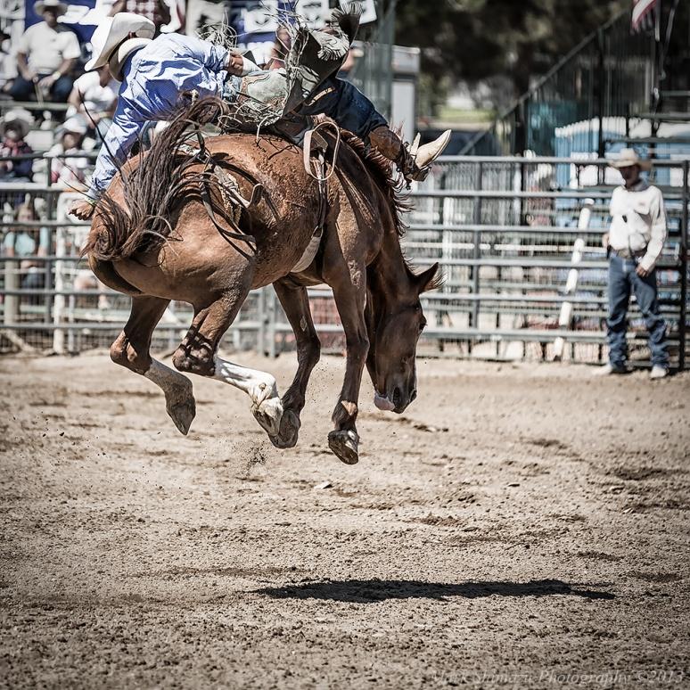 Poway Rodeo cowboy horse bronco
